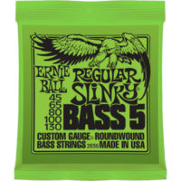 ernieball-bass-regular