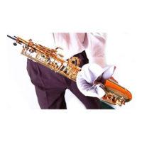 katharistiko-pani-gia-tenoro-saxofono-a30-l