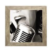 kadro-mikrofono